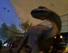 ひろき 公式ブログ/※恐竜2※ 画像1