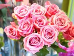 SONOMI 公式ブログ/花♪ 画像2