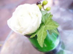 SONOMI 公式ブログ/花♪ 画像1