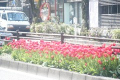 SONOMI 公式ブログ/真っ赤だな〜♪ 画像1