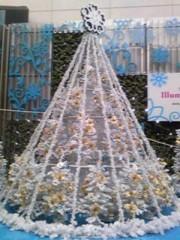 朝比奈ゆうひ 公式ブログ/ クリスマスツリー大集合2(*´艸`*) 画像3