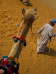 朝比奈ゆうひ プライベート画像/ゆうひ教室 なぜエジプト