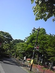 朝比奈ゆうひ 公式ブログ/ 映画のイメージ撮影(・ω・)ノ 画像1