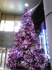 朝比奈ゆうひ 公式ブログ/ クリスマスツリー大集合2(*´艸`*) 画像1