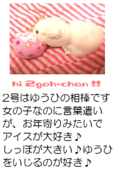 朝比奈ゆうひ 公式ブログ/2号と絡むのぢゃ〜! 画像3