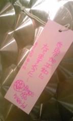 朝比奈ゆうひ 公式ブログ/星に願いを… 画像1