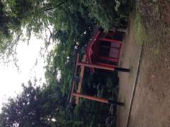 朝比奈ゆうひ 公式ブログ/京都の自然(・ω・) 画像2