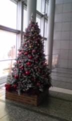 朝比奈ゆうひ 公式ブログ/ クリスマスツリー大集合2(*´艸`*) 画像2