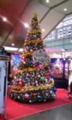 朝比奈ゆうひ 公式ブログ/ クリスマスツリー大集合(*´艸`*) 画像3
