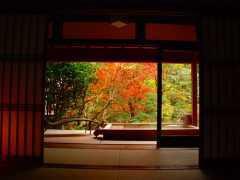朝比奈ゆうひ 公式ブログ/ どこに行きたい?−秋スペシャル− 画像1