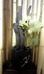 朝比奈ゆうひ 公式ブログ/炭の旅館 画像1