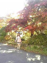 朝比奈ゆうひ 公式ブログ/紅葉が綺麗です⊂(*^ω^*)⊃ 画像2
