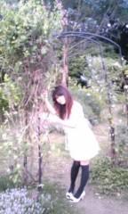 朝比奈ゆうひ 公式ブログ/ お花畑で撮影( *бωб) 画像1