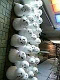 朝比奈ゆうひ 公式ブログ/ゆうひガイドの雪国ツアー 画像3
