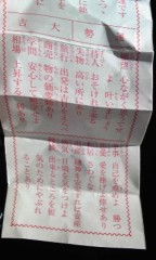 朝比奈ゆうひ 公式ブログ/ゆうひの初詣で 画像3