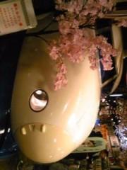 朝比奈ゆうひ プライベート画像 81〜100件/2010.04.25〜 昨日の答え