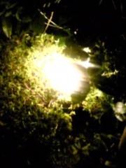 朝比奈ゆうひ プライベート画像 21〜32件/クエスト用 希望の光
