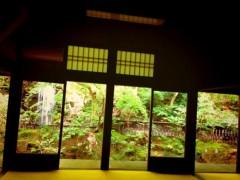 朝比奈ゆうひ 公式ブログ/日本の庭園(・ω・)✨ 画像1