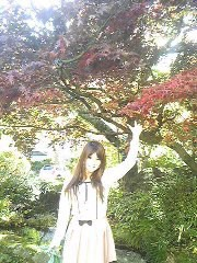 朝比奈ゆうひ 公式ブログ/紅葉が綺麗です⊂(*^ω^*)⊃ 画像3