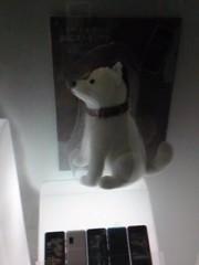朝比奈ゆうひ 公式ブログ/ SoftBank、犬のお父さんが!!((゜Д゜ll)) 画像1