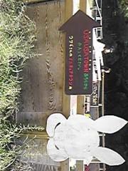 朝比奈ゆうひ 公式ブログ/ リアル2号もいた(;;゜;Ж;゜;;) 画像1