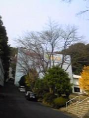 朝比奈ゆうひ プライベート画像 61〜80件/2010.04.25〜 Dの人