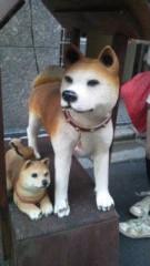 城山ゆう 公式ブログ/秋田犬にキター(・∀・)- 画像2
