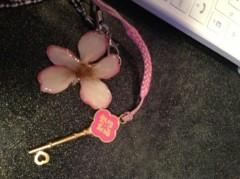 笹井紗々 公式ブログ/桜の花びら 画像1