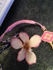 笹井紗々 公式ブログ/桜の花びら 画像2