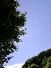 温井摩耶 公式ブログ/嵐のあとの 画像1