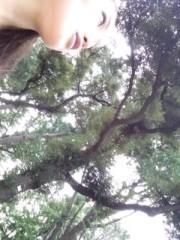 滝ありさ 公式ブログ/緑と青 画像2