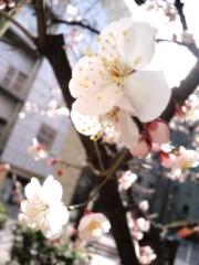 滝ありさ 公式ブログ/うめ 画像2