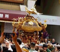 世界のうめざわ 公式ブログ/お神輿 カープ 画像1