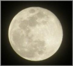 賀久涼太 公式ブログ/十五夜。 画像1