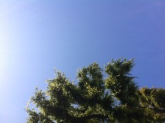 賀久涼太 公式ブログ/いい天気。 画像1