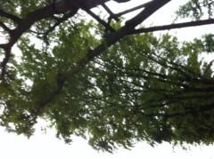 賀久涼太 公式ブログ/自然。 画像1