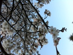 賀久涼太 公式ブログ/きれ〜い♪ 画像2
