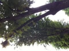 賀久涼太 公式ブログ/自然。 画像2