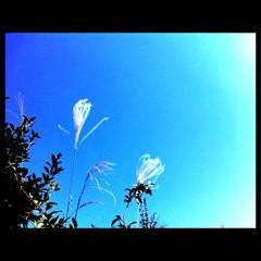 FLOWER 公式ブログ/♪( ´▽`) 希♪ 画像1