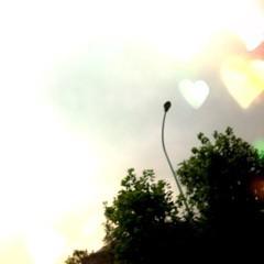 FLOWER 公式ブログ/おはよう♪れいな 画像1