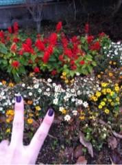 FLOWER 公式ブログ/おさんぽ。伶菜 画像1