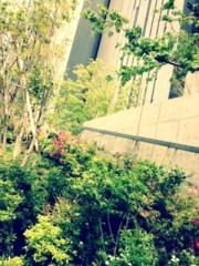 FLOWER 公式ブログ/Happy★真波 画像1
