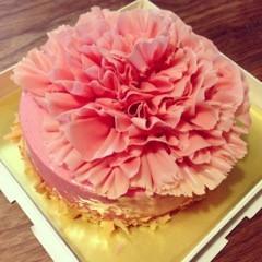 FLOWER 公式ブログ/母の日、希 画像1