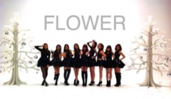FLOWER 公式ブログ/パート2(^_-)はるみ 画像1