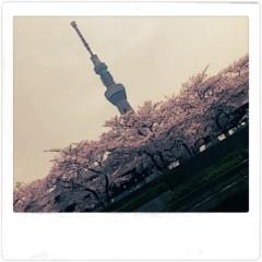 FLOWER 公式ブログ/さくら。萩花 画像1