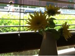 FLOWER 公式ブログ/またーり。千春 画像2