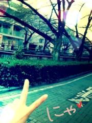 FLOWER 公式ブログ/へい\(^o^)/晴美 画像1