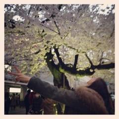 FLOWER 公式ブログ/まだあった!希 画像1