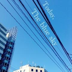 FLOWER 公式ブログ/キレイ!   千春 画像1