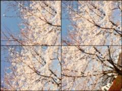 FLOWER 公式ブログ/おさんぽ 杏香 画像1